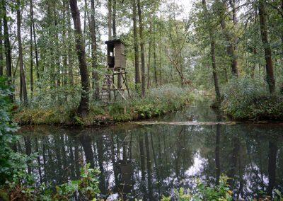 Hochsitz im Spreewald vor Wasserlauf